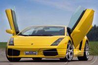 Flügeltüren LSD Lamborghini Gallardo