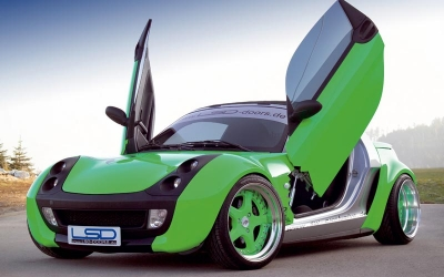 Flügeltüren LSD-Doors Smart Roadster